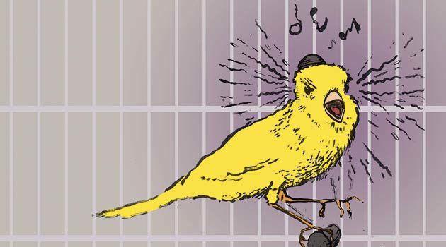 canary-illus-credit-kurt-hoffman-630x350-1425627548